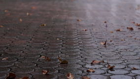 Close up of rain on driveway stock footage
