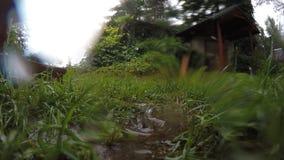 Close up rain drop drip in meadow dirt. Drop on camera glass. 4K. Close up of rain drops dripping in meadow dirt. Drop on camera glass. 4K UHD video clip stock footage