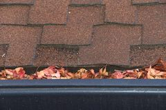 Close up of rain gutters on house filled with leaves. Gutters on shingle roof without gutter guards, clogged with leaves from trees. Increased risk of clogged Royalty Free Stock Photos