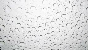Close-up of raindrops stock video