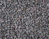 Close-up of raisins Royalty Free Stock Photography