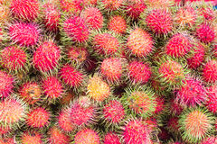 Close up Rambutan fruit for healthy Stock Image