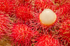 Close up of Rambutan fruits Stock Photo