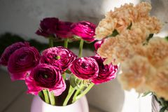 Close up of a Ranunculus and carnation flower in vase. royalty free stock photo