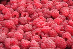 Close-up of raspberries Stock Images