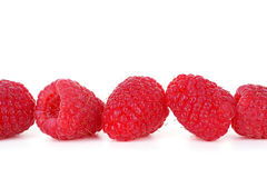 Close Up Raspberries on White Background Stock Images