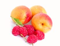Close-up of raspberry and apricots. Close-up of raspberry with leaves and apricots Royalty Free Stock Images