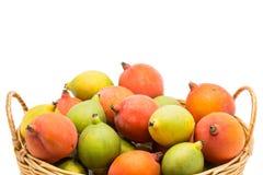 Close Up Raw Betel Nut Stock Photos