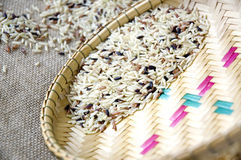 Close up raw brown rice Stock Image