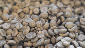 Close up raw coffee beans unroasted background and texture conce Royalty Free Stock Photography