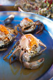Close up raw crab on plate. In sun light Stock Photo