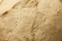 Close-up of raw dough Royalty Free Stock Photo