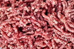 Close up of raw ground beef. Close up of pinky raw ground beef.. Ground beef can be used to make hamburgers cutlet, chili con carne or other dishes Royalty Free Stock Images