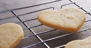 Raw heart shape cookies with sugar icing on baking tray 4k. Close-up of raw heart shape cookies with sugar icing on baking tray 4k stock video footage