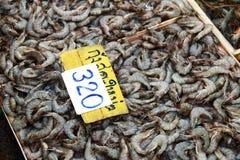 Close up raw shrimp Stock Image