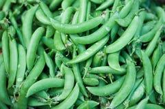 Close up raw Sugar Pea green fresh market background, Pisum sativum Royalty Free Stock Photos