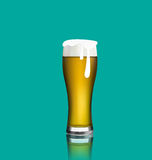 Close up realistic glass of beer with reflection Stock Image