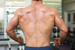 Close-up rear view of a bodybuilder in gym Stock Images