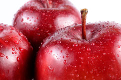 Close up red apples. Close up fresh red apples on white background royalty free stock images