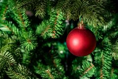 Close up red bauble on artrificial Christmas tree royalty free stock photos