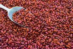 Close up Red beans with spoon royalty free stock images