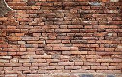 Close up red brick wall Royalty Free Stock Photo