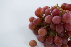 Close-up of red bunch of grapes. On white background stock images