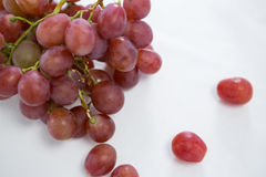 Close-up of red bunch of grapes. On white background stock photography