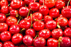 Close up of Red Cherries Stock Image