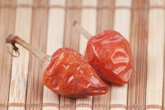 Close-up Red chilli pepper. On bamboo background Royalty Free Stock Photography
