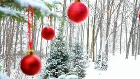 Close-up of red Christmas Baubles Balls hanging on snow covered pine tree branches. Close-up of red Christmas Baubles Balls hanging on snow covered pine tree stock footage