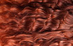 Close-up of red curly hair Stock Photos