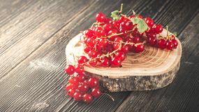 Red currant berry on black wood boards stock photography
