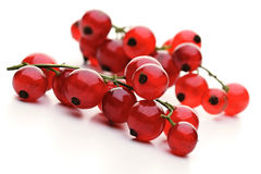 Close - up of red currants Stock Image