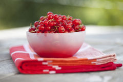 Close up of red currants in a bowl Royalty Free Stock Photo