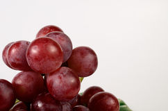 Close up red grape. Close up of red grape stock photo