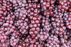 Close up of red grape Royalty Free Stock Photography
