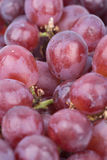 Close up red grapes Royalty Free Stock Photography