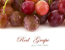Close up of red grapes on white background Royalty Free Stock Photos