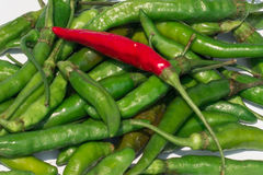 Close-up red and green chillies. Red and green chillies mixed royalty free stock images