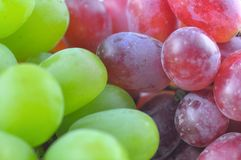 Close up of red and green grapes Royalty Free Stock Photography
