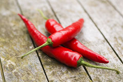 Close-up of red hot chilipeppers Stock Images