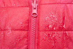 Close-up of red jacket with zipper. And raindrops after the rain. waterproof clothing Royalty Free Stock Photos