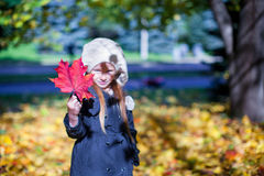 Close-up red maple leaf in the hands of little Royalty Free Stock Images
