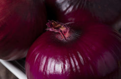 Close up Red Onion Stock Image