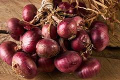 Fresh red onions on old rustic wooden table. Close up of a red onions on rustic wood. Healthy vegetarian food Stock Photography