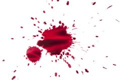 Splattered red paint isolated on white background. Close up of red paint drops on white background royalty free stock photography