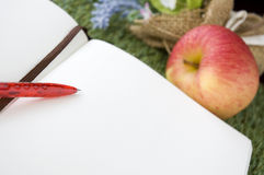 Close up red pen on white page Royalty Free Stock Image