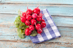Close up of red radish bundle on checked napkin Royalty Free Stock Photography