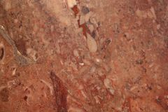 Close up of a red rock texture Stock Photo